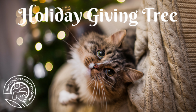 Homeward Pet's Holiday Giving Tree